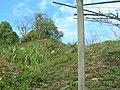 台中市東勢區慶福里沿著軟埤坑、燥坑分水嶺向西北看 - panoramio.jpg