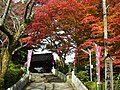 吉野町吉野山 吉水神社にて Yoshimizu-jinja 2011.11.27 - panoramio.jpg