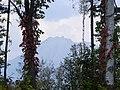 恵庭岳(Mt.Eniwa) - panoramio.jpg