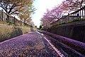 旧軽川緑地(Old Garu River green space) - panoramio (1).jpg