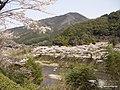 藁科川 - panoramio (1).jpg
