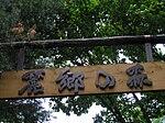 麓郷の森 入り口木の看板P6220385.jpg