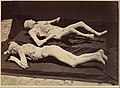 -Plaster Casts of Bodies, Pompeii- MET DP262064.jpg