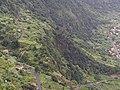 04-08-2019 Madeira Juli 2019 0241 (48905084881).jpg