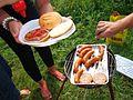 08259 Grilling on the bank at San river, Sanok.jpg
