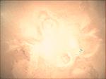 09-363.57.19 VMC Img No 20 (8268431825).png