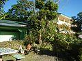 09556jfAlexis G. Santos National High School Liciada, Bustos Bulacanfvf 08.jpg