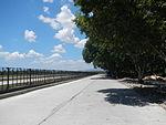 09742jfBinalonan Pangasinan Province Roads Highway Schools Landmarksfvf 10.JPG