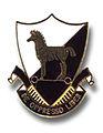 10th SpecForGp crest.jpg