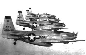 District of Columbia Air National Guard - District of Columbia Air National Guard F-51H Mustangs, 1949