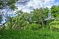 17 Остепненные склоны и балочные леса по правому берегу долины р. Осетрик.jpg