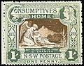 1897 Semi-postal stamp in NSW.jpg