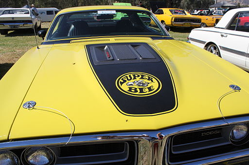 1971 Dodge Charger Super Bee (16368030743)