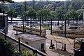 1982-05 Dépot de trams de Woluwe, Woluwe-Saint-Pierre (12306862365).jpg