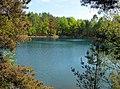 20050521120DR Teichlandschaft Kromlau - Weißwasser.jpg