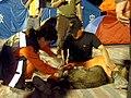 2008년 중앙119구조단 중국 쓰촨성 대지진 국제 출동(四川省 大地震, 사천성 대지진) SV400703.JPG