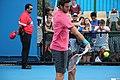2013 Australian Open IMG 4583 (8393690566).jpg