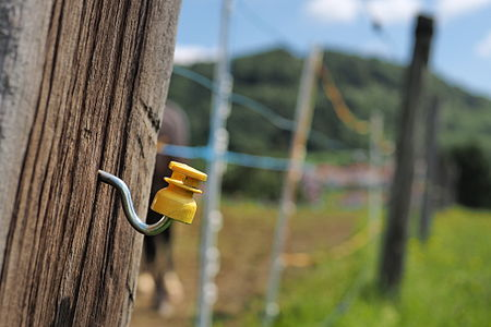 Yellow plastic insulator of an electric fence