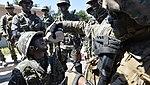 2015.9.19.해병대2사단-한미 해병 합동훈련 - 16th Sep. 2015. ROK 2nd Marine Division - ROKMC & USMC joint trainning (21831481288).jpg