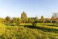 20150510 Hönower Weiherkette - U-Bhf Hönow by sebaso IMG 4055.jpg