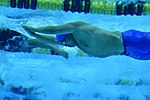 2016 DoD Warrior Games, Swimming 160620-F-QZ836-098.jpg