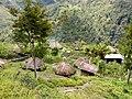 20170904 Papouasie Baliem valley 8.jpg