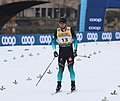 2019-01-12 Men's Final at the at FIS Cross-Country World Cup Dresden by Sandro Halank–010.jpg