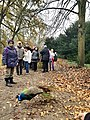 2020-12-12-Hike-to-Rheydt-Palace-and-its-surroundings.-Fhotos-12.jpg
