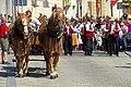 27.8.16 Strakonice MDF Sunday Parade 015 (28686084334).jpg