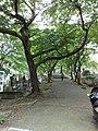 2 Chome-34 Minamiaoyama, Minato-ku, Tōkyō-to 107-0062, Japan - panoramio.jpg