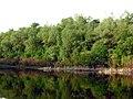 30 04 2012 - panoramio (1).jpg