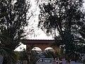 35649 Parque Holandés, Las Palmas, Spain - panoramio (5).jpg