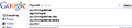 3rd part google search key 2011-02-11.png