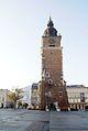 6889vik Kraków w obrębie Plant. Rynek. Foto Barbara Maliszewska.jpg