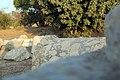 71-7100-100 - תל אשקלון - הבסיליקה הרומית - לריסה סקלאר גילר (5).jpg