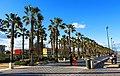 783 Passeig marítim del Cabanyal (València).jpg