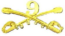 A computer generated reproduction of the insignia of the Union Army 9th Regiment cavalry branch. The insignia is displayed in gold and consists of two sheafed swords crossing over each other at a 45 degree angle pointing upwards with a Roman numeral 9