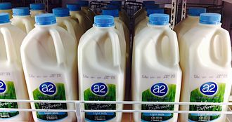 "A2 milk - ""a2"" branded milk on sale"