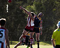 AFL Bond University Bullsharks (17526201263).jpg
