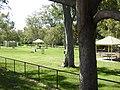 AU-Qld-Kalinga-Park-dog park-2021.jpg