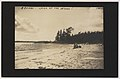 A Beach, Lake-of-the-Woods (HS85-10-26191).jpg
