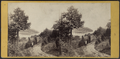 A View from Idlewild, by E. & H.T. Anthony (Firm) 3.png