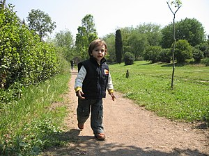 Boy toddler. A child running in the park.