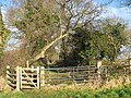 A double gate - geograph.org.uk - 1128563.jpg