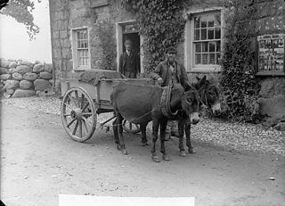 A man and a cart drawn by donkeys (Watkins), Cricieth