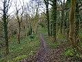A woodland path, Rowsley - geograph.org.uk - 1617450.jpg