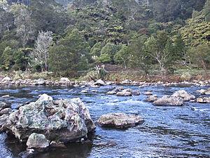 Karangahake Gorge - The gorge near Waihi