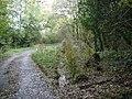 Abandoned footbridge - geograph.org.uk - 1001661.jpg
