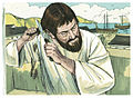 Acts of the Apostles Chapter 18-12 (Bible Illustrations by Sweet Media).jpg