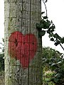 Adorned with a red heart - detail - geograph.org.uk - 984268.jpg